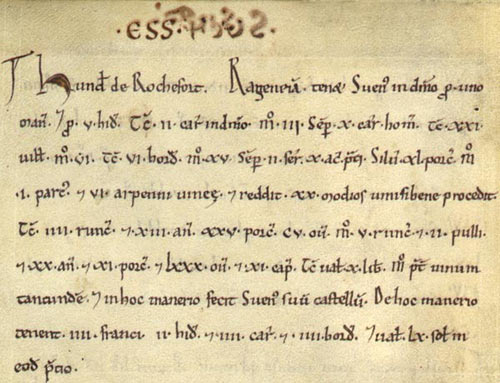 A page from Little Domesday; Essex E31/1/1