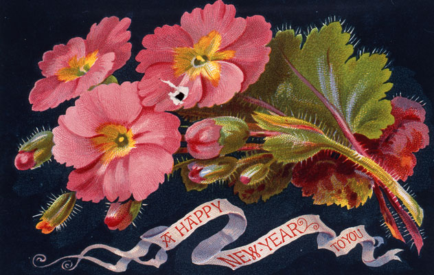 A Happy New Year to You, 1876. Catalogue reference: COPY 1/33