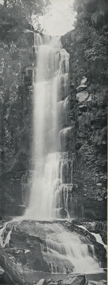 Erskine Falls, Lorne, Victoria, Australia, 1912 Catalogue reference: CO 1069/623
