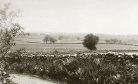 View of Bannockburn, 1898 (catalogue reference: COPY 1/438)